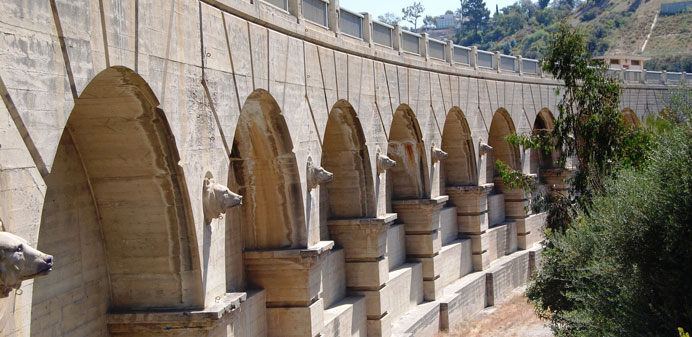 Intricate dam structure